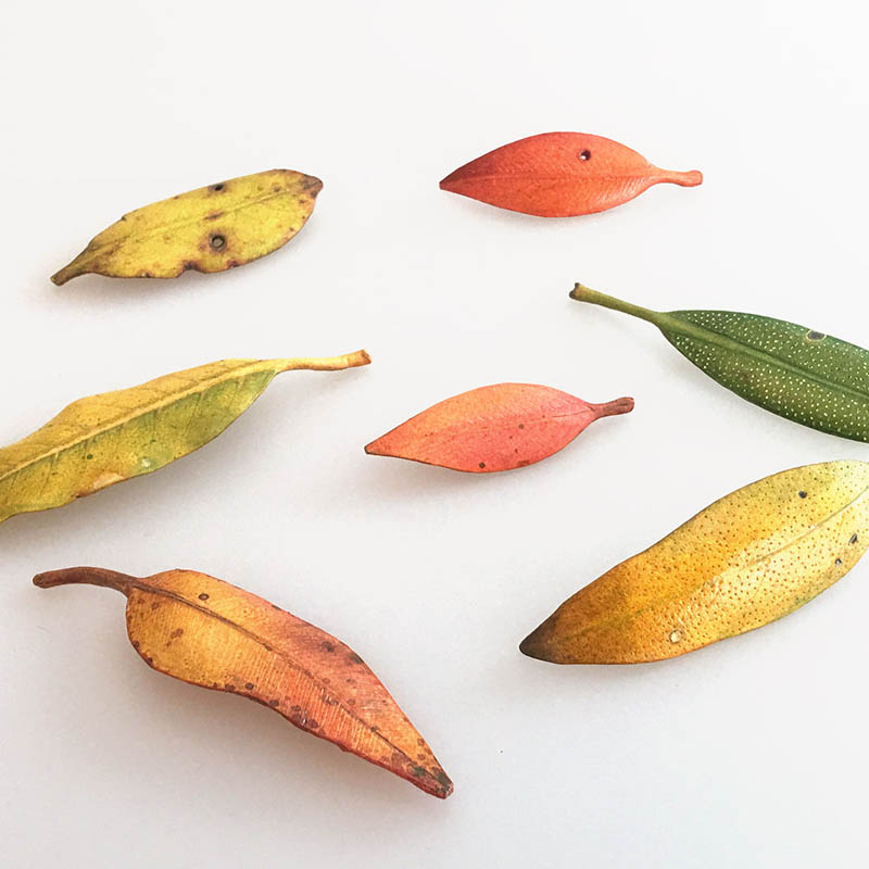 Paper and wire leaf brooches by Katy Buess
