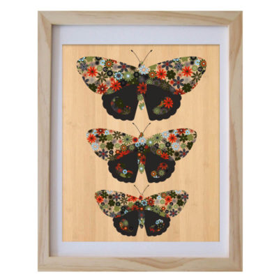 Red Admiral butterflies by Aly Bennett