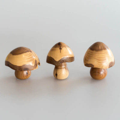 Yew wooden mushrooms by Pater Aalders